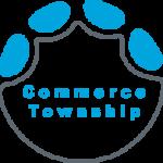 Elephant Foot Icon commerce