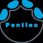 Elephant Foot Icon pontiac
