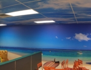 custom vinyl wall murals columbus ohio